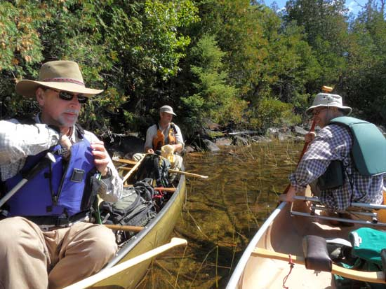 Kurt, Mike and Norm in canoes documenting the bladderwort along the shore of Gaskin Lake.