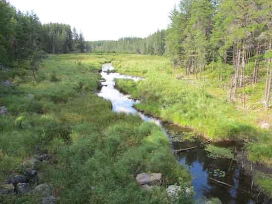 Keely Creek
