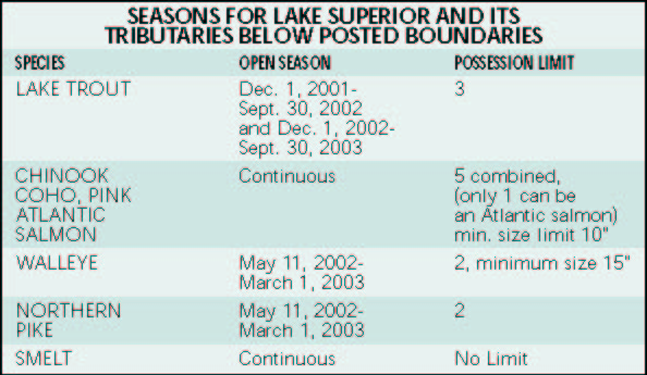 Regulations for Mn dnr fishing license