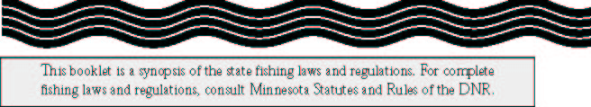 Regulations new for 2002 for Lifetime fishing license mn