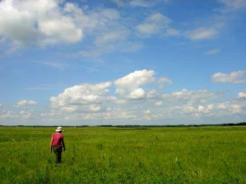 Plover Prairie Preserve, Lac Qui Parle County