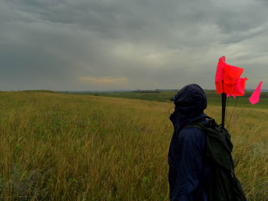 A cloudy sky and an expansive prairie with a person with flags facing with their back to the camera.