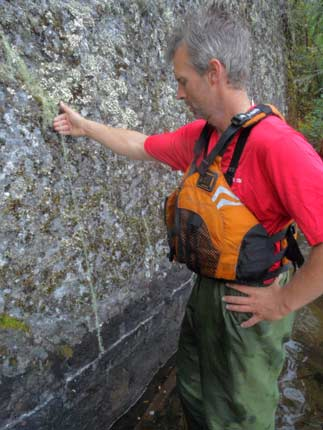 Mike identifying Methuselah's beard lichen.