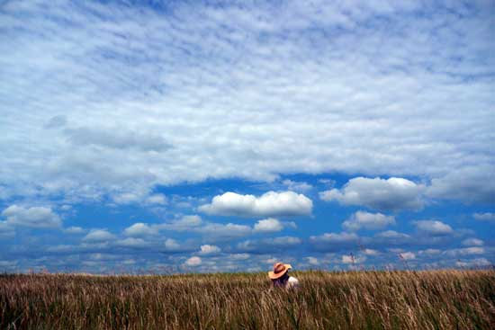 An expansive blue sky and Fred on his phone in the prairie in the foreground.