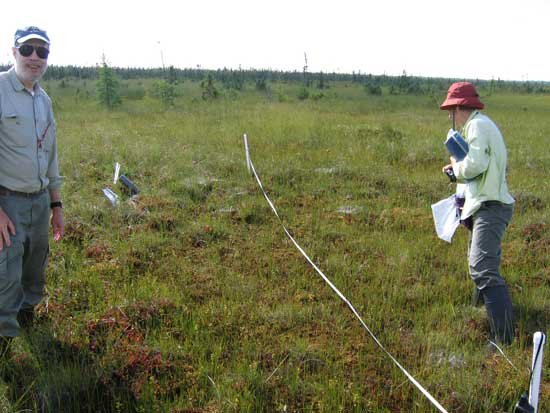 Dr. Paul Glaser and Erika Rowe marking a permanent plot in a schlenke bog.