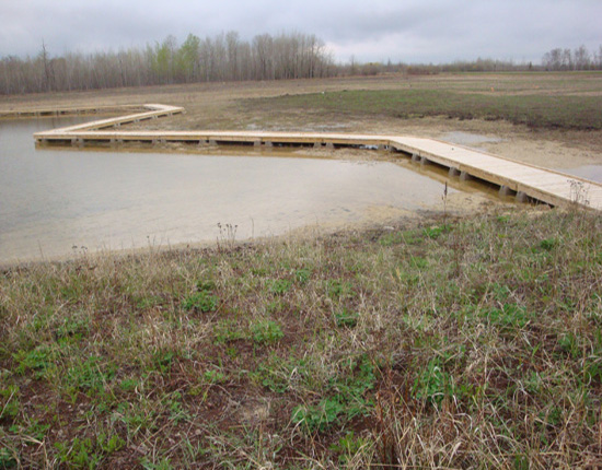 The boardwalk at Baudette School Forest in Baudette allows students to safely study their wetland area.
