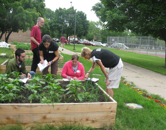 Humboldt School Forest, St.Paul, features raised garden beds.