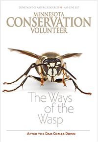 Image of Minnesota Conservation Volunteer magazine cover